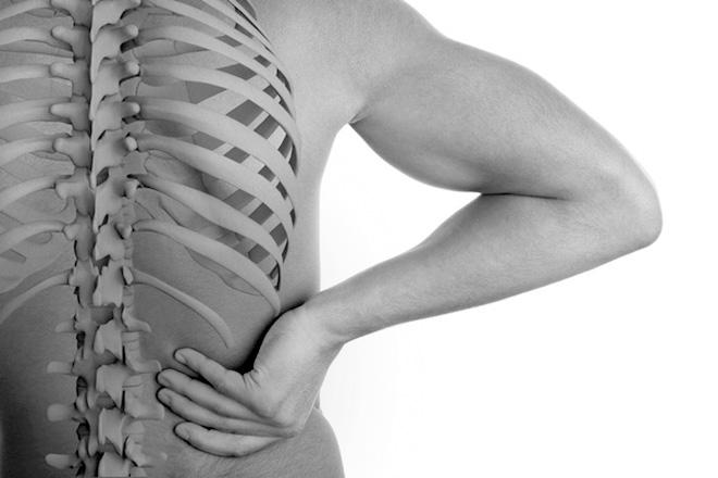 Natürlich gesund: Rücken Anatomie